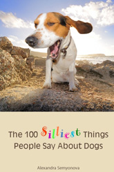 100silliestthings-small
