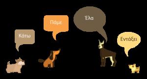 εκπαίδευση σκύλων: Ο σκύλος μαθαίνει εντολές