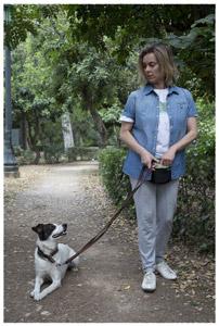 """εκπαίδευση σκύλων: Η εντολή """"κάτω"""""""