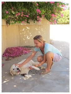 """εκπαίδευση σκύλων: Η εντολή """"εντάξει"""""""